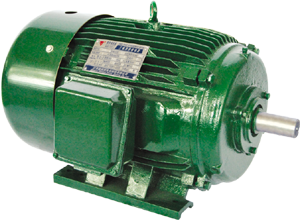 Nema Premium Efficiency Motor Jiangsu Weiteli Motors