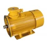 泵用隔爆型三相异步电动机
